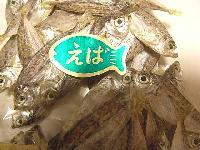 スズキ目ヒイラギ科